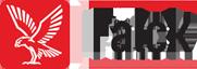 logo - falck